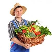 Услуги садовника в Минске